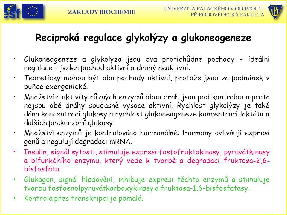 Reciproká regulace glykolýzy a glukoneogeneze