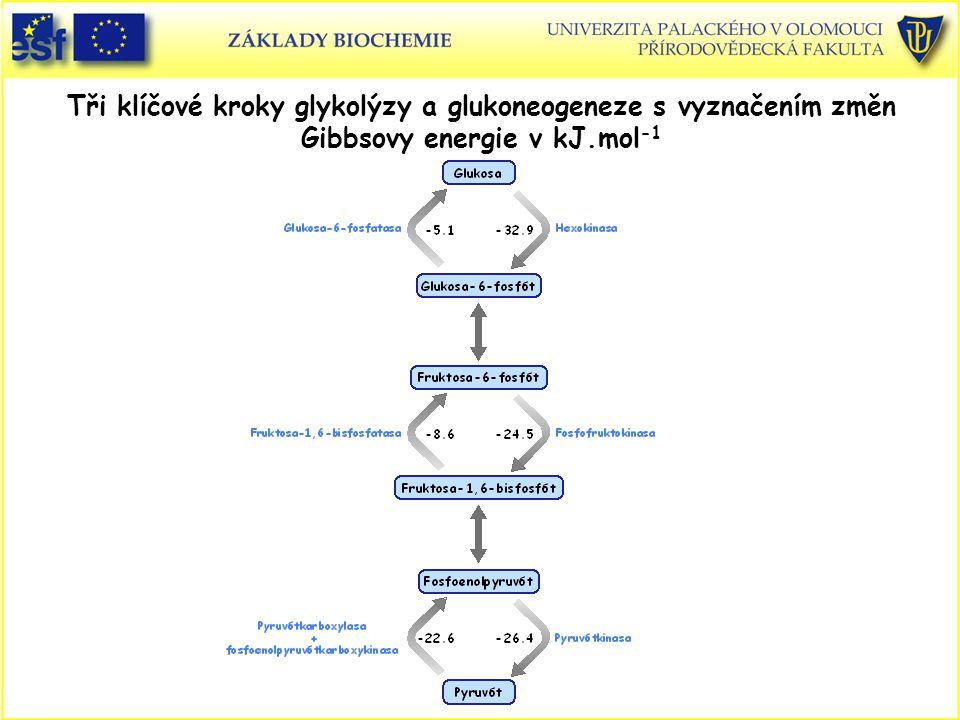 Tři klíčové kroky glykolýzy a glukoneogeneze s vyznačením změn Gibbsovy energie v kJ.mol-1