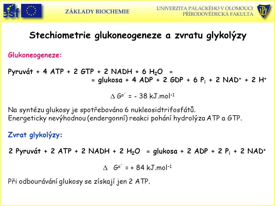 Stechiometrie glukoneogeneze a zvratu glykolýzy