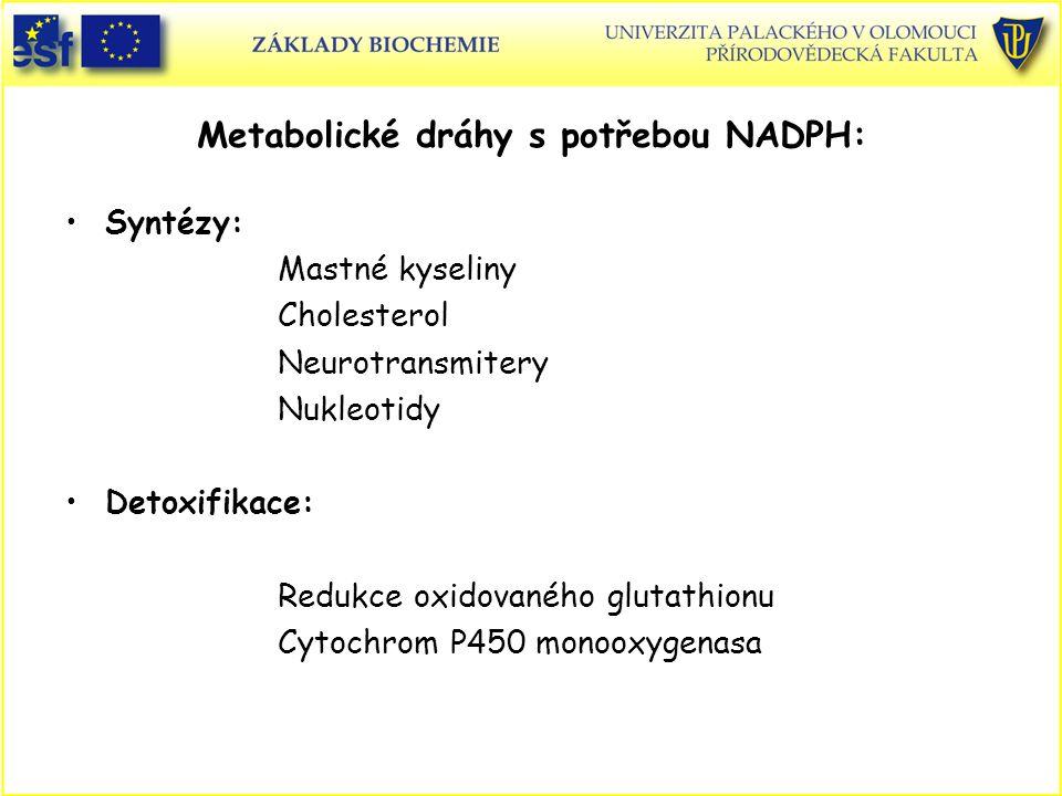 Metabolické dráhy s potřebou NADPH: