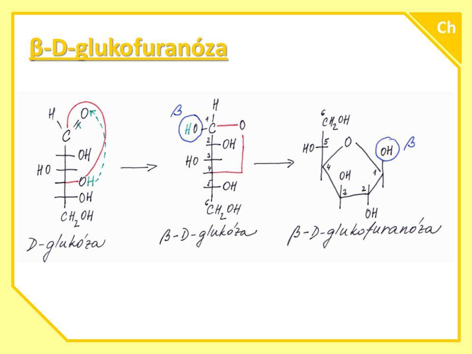 Ch β-D-glukofuranóza A