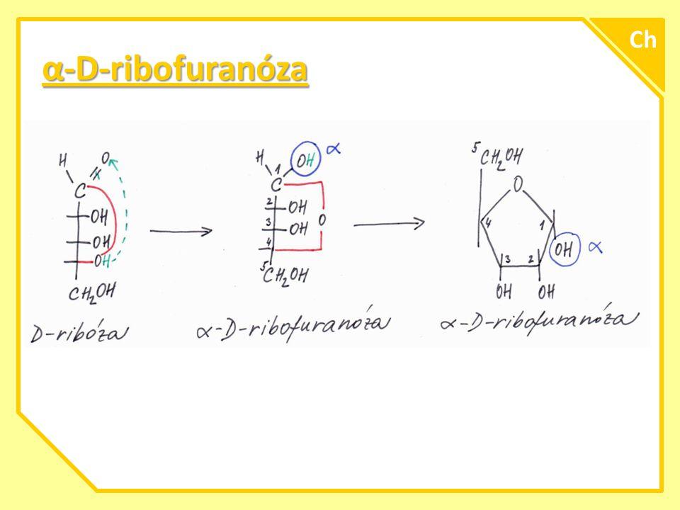 Ch α-D-ribofuranóza A