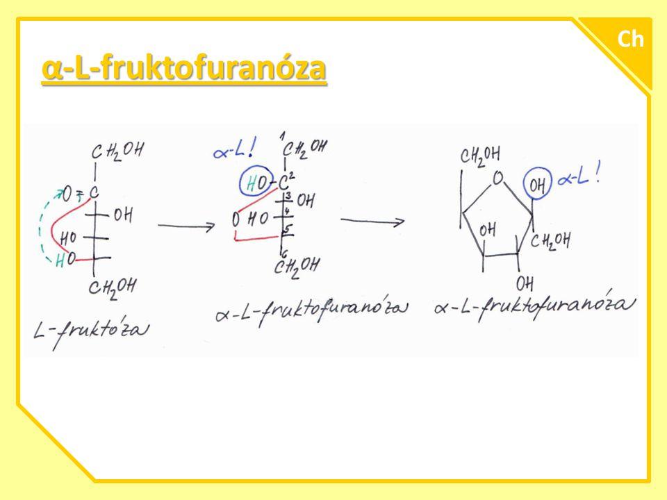 Ch α-L-fruktofuranóza A