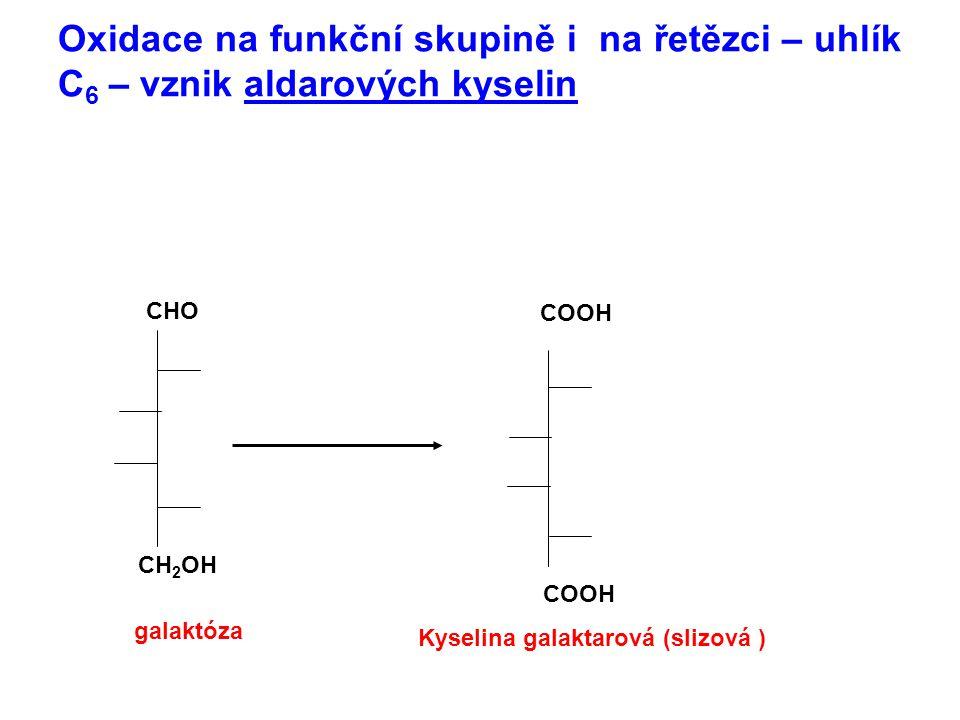 Oxidace na funkční skupině i na řetězci – uhlík C6 – vznik aldarových kyselin