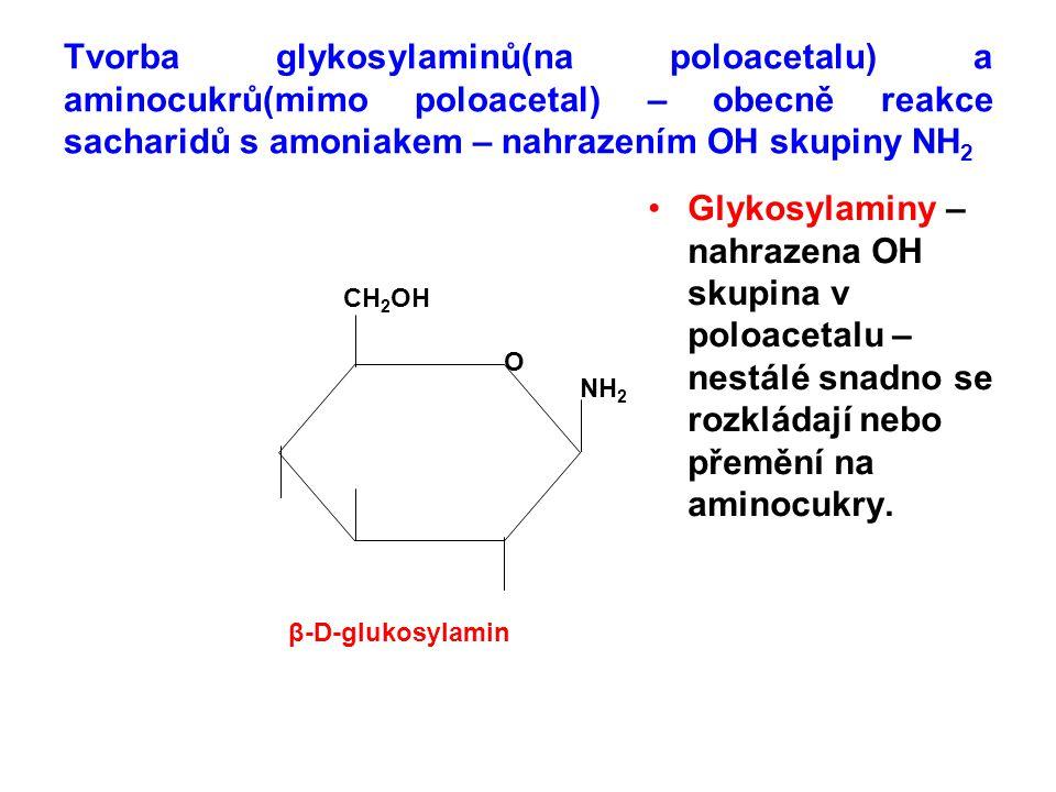 Tvorba glykosylaminů(na poloacetalu) a aminocukrů(mimo poloacetal) – obecně reakce sacharidů s amoniakem – nahrazením OH skupiny NH2