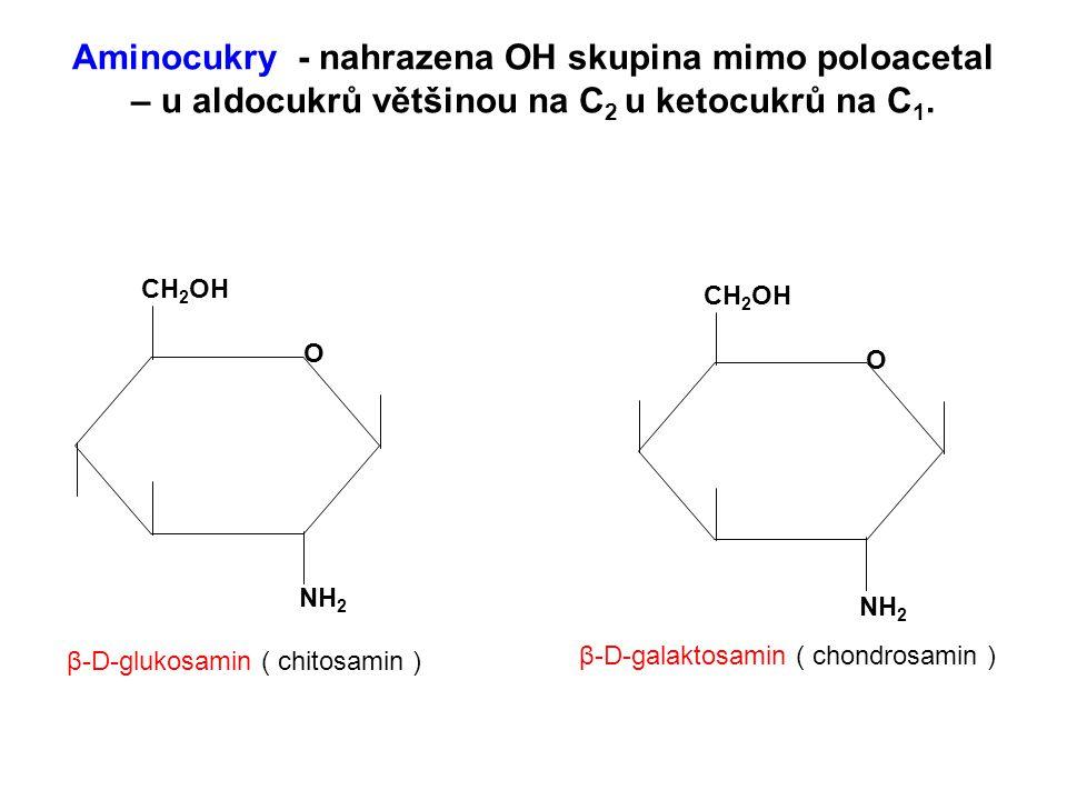 Aminocukry - nahrazena OH skupina mimo poloacetal – u aldocukrů většinou na C2 u ketocukrů na C1.
