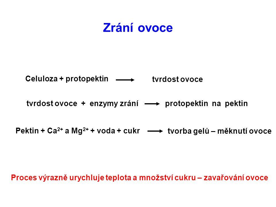 Zrání ovoce Celuloza + protopektin tvrdost ovoce