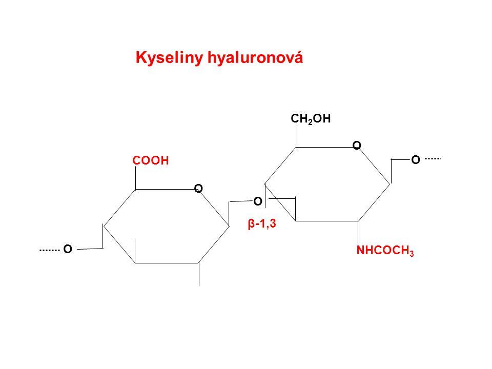 Kyseliny hyaluronová CH2OH O COOH O O O β-1,3 O NHCOCH3