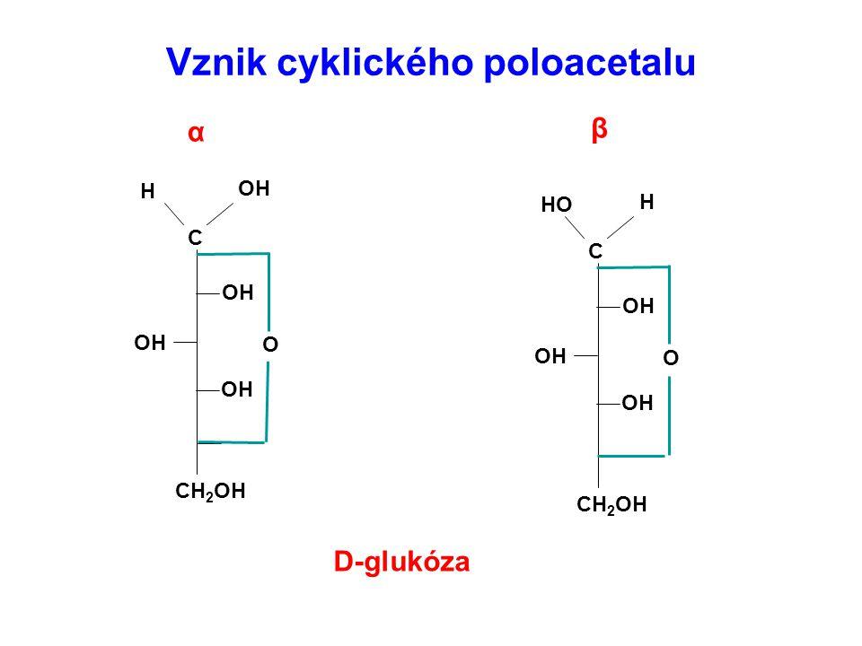 Vznik cyklického poloacetalu