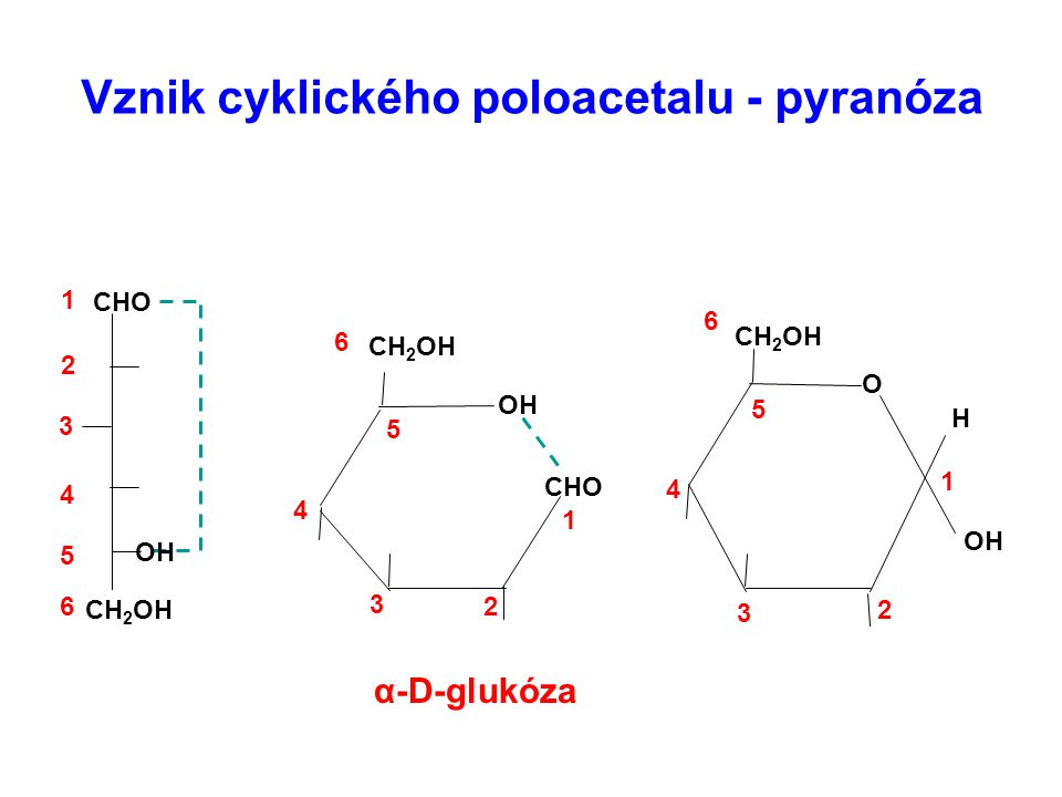 Vznik cyklického poloacetalu - pyranóza