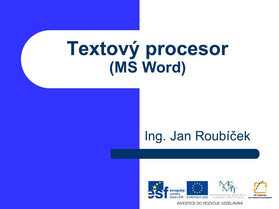 Textový procesor (MS Word)