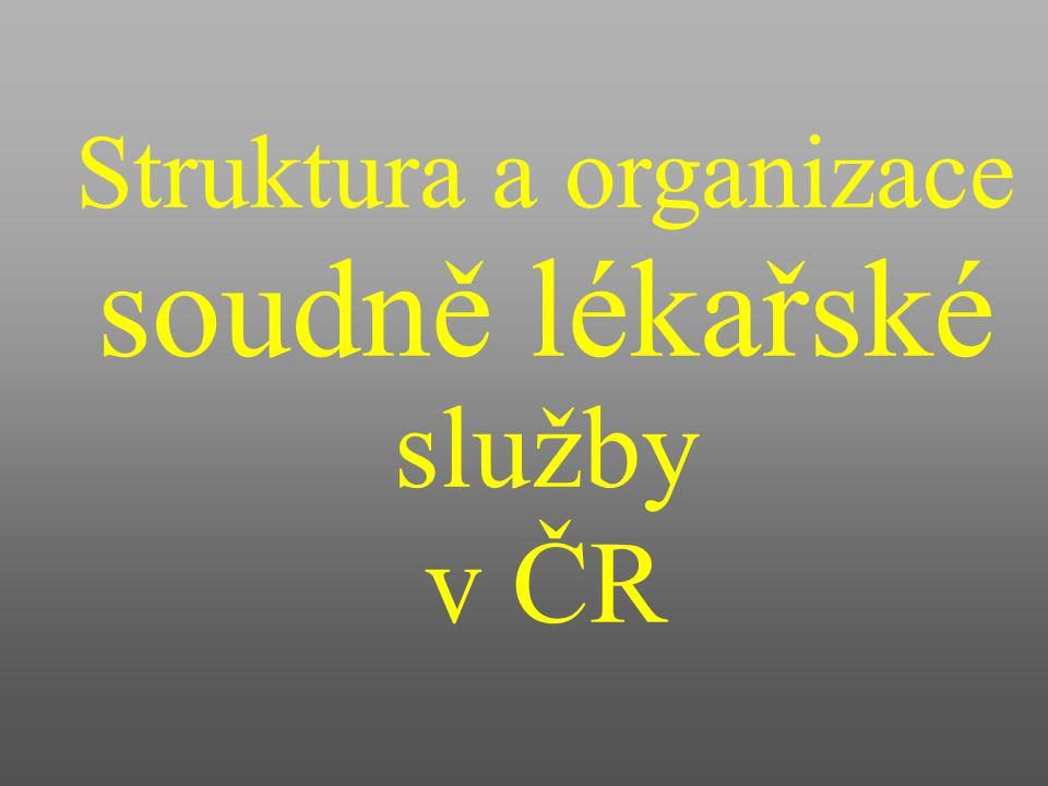 Struktura a organizace