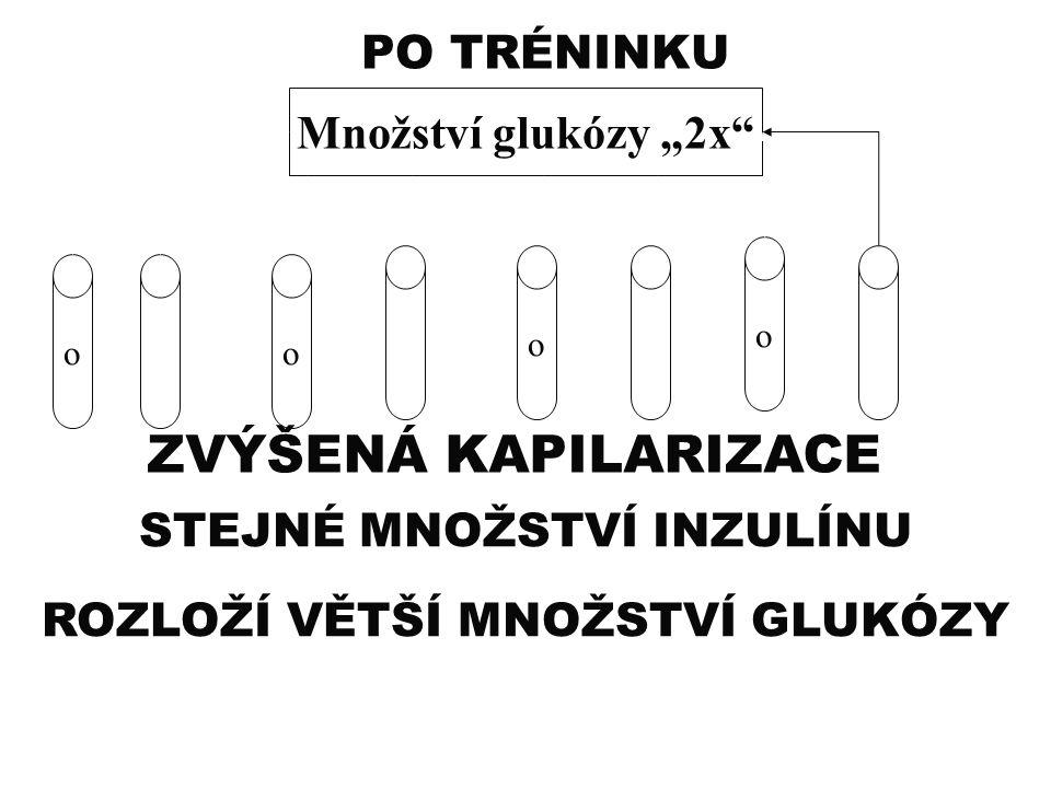 """ZVÝŠENÁ KAPILARIZACE PO TRÉNINKU Množství glukózy """"2x"""