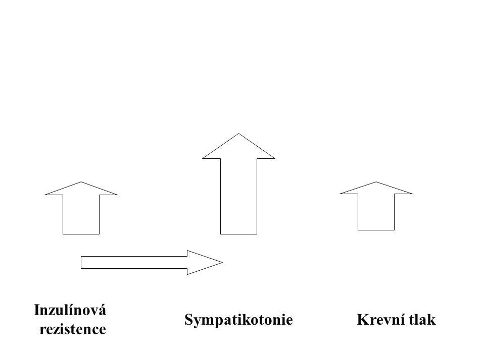 Inzulínová rezistence Sympatikotonie Krevní tlak