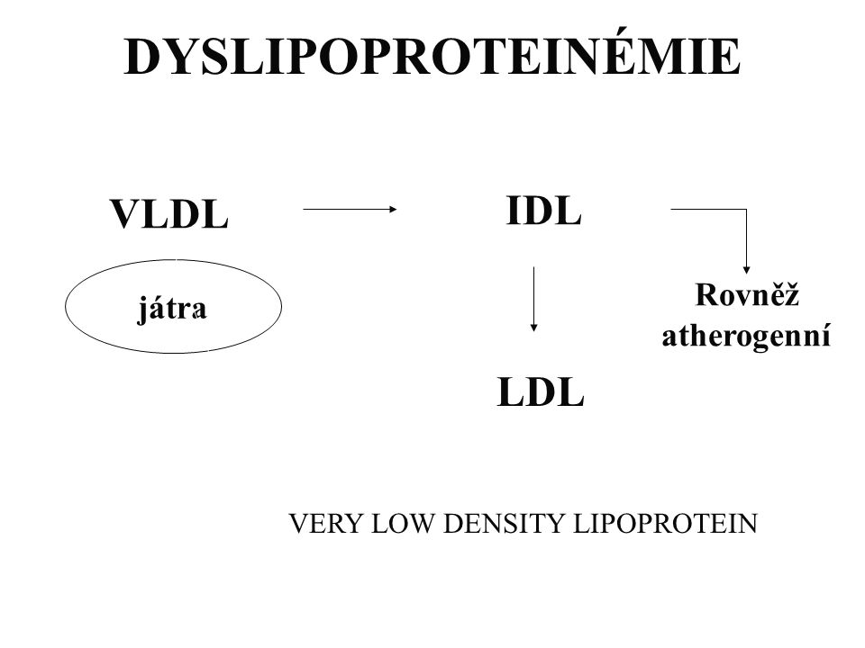 VERY LOW DENSITY LIPOPROTEIN