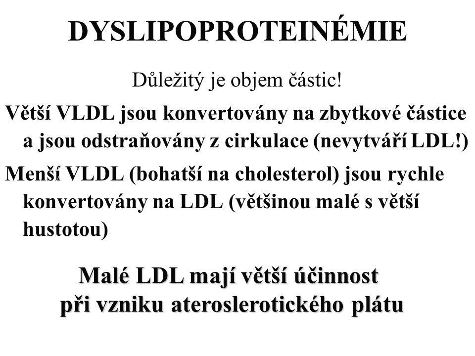 Malé LDL mají větší účinnost při vzniku ateroslerotického plátu