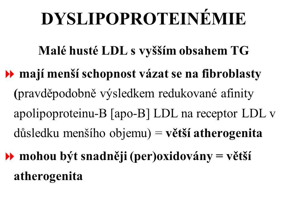 Malé husté LDL s vyšším obsahem TG