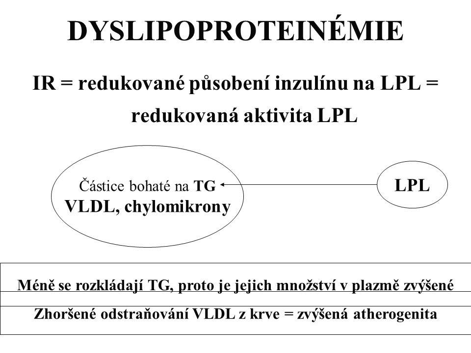 DYSLIPOPROTEINÉMIE IR = redukované působení inzulínu na LPL = redukovaná aktivita LPL. Částice bohaté na TG.