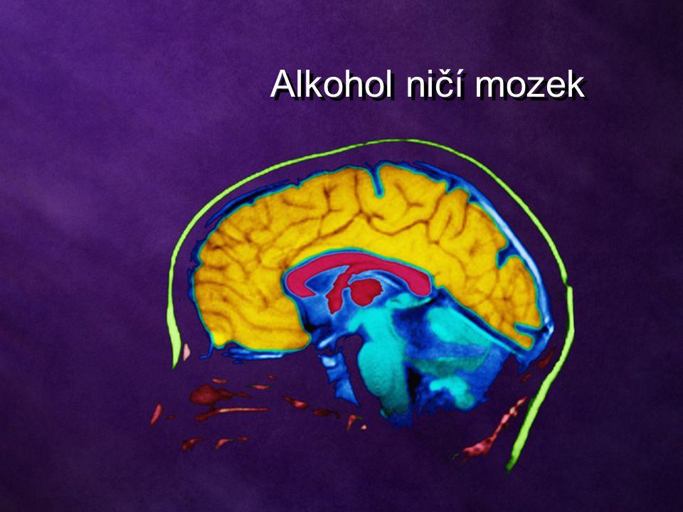 Alkohol ničí mozek