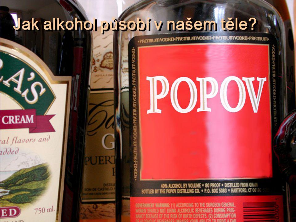 Jak alkohol působí v našem těle