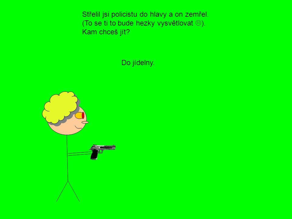 Střelil jsi policistu do hlavy a on zemřel