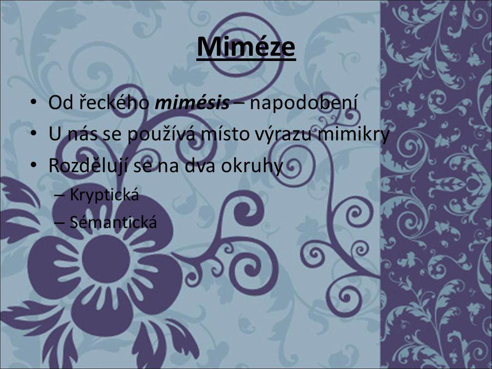Miméze Od řeckého mimésis – napodobení
