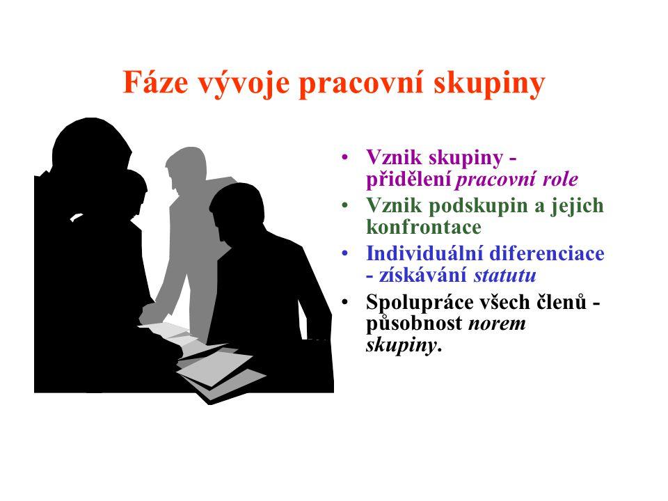 Fáze vývoje pracovní skupiny