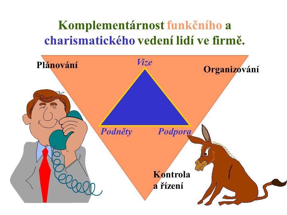 Komplementárnost funkčního a charismatického vedení lidí ve firmě.