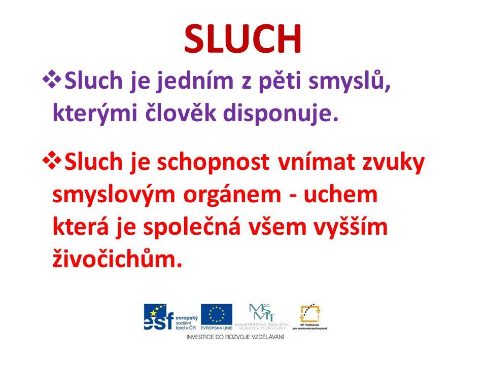 SLUCH Sluch je jedním z pěti smyslů, kterými člověk disponuje.