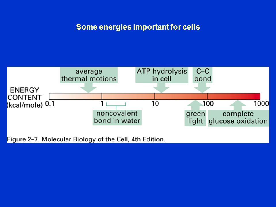 Some energies important for cells