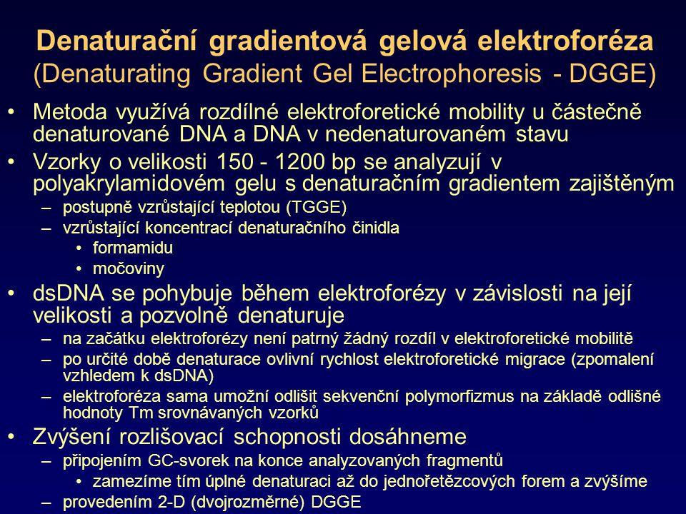 Denaturační gradientová gelová elektroforéza (Denaturating Gradient Gel Electrophoresis - DGGE)