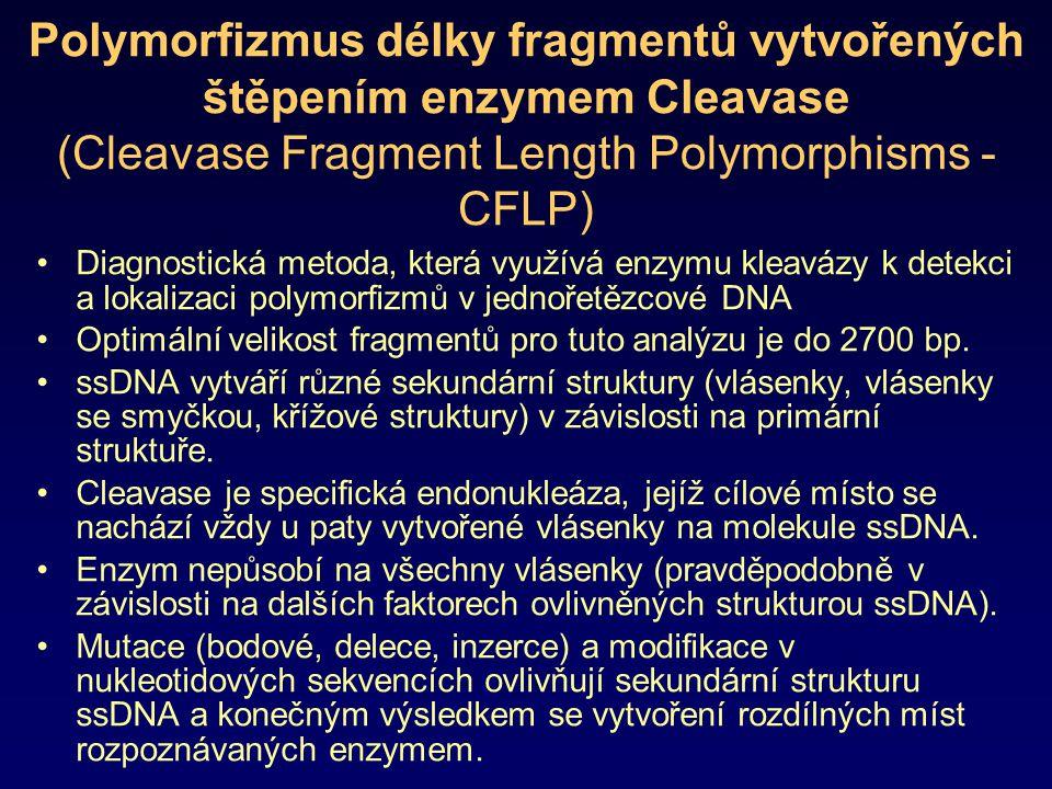 Polymorfizmus délky fragmentů vytvořených štěpením enzymem Cleavase (Cleavase Fragment Length Polymorphisms - CFLP)
