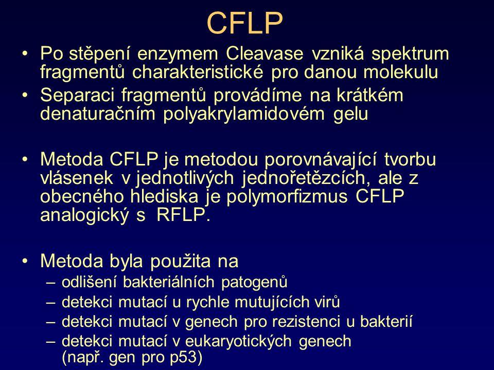 CFLP Po stěpení enzymem Cleavase vzniká spektrum fragmentů charakteristické pro danou molekulu.