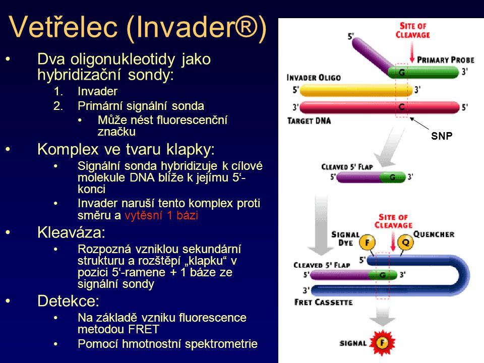 Vetřelec (Invader®) Dva oligonukleotidy jako hybridizační sondy: