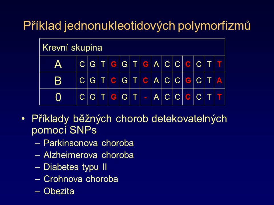 Příklad jednonukleotidových polymorfizmů