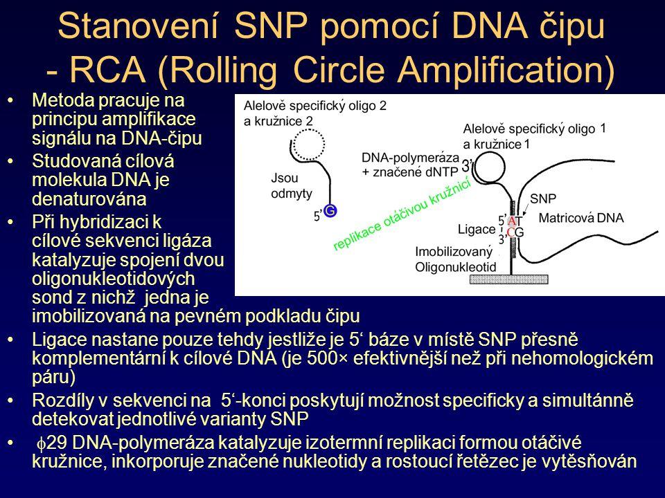 Stanovení SNP pomocí DNA čipu - RCA (Rolling Circle Amplification)