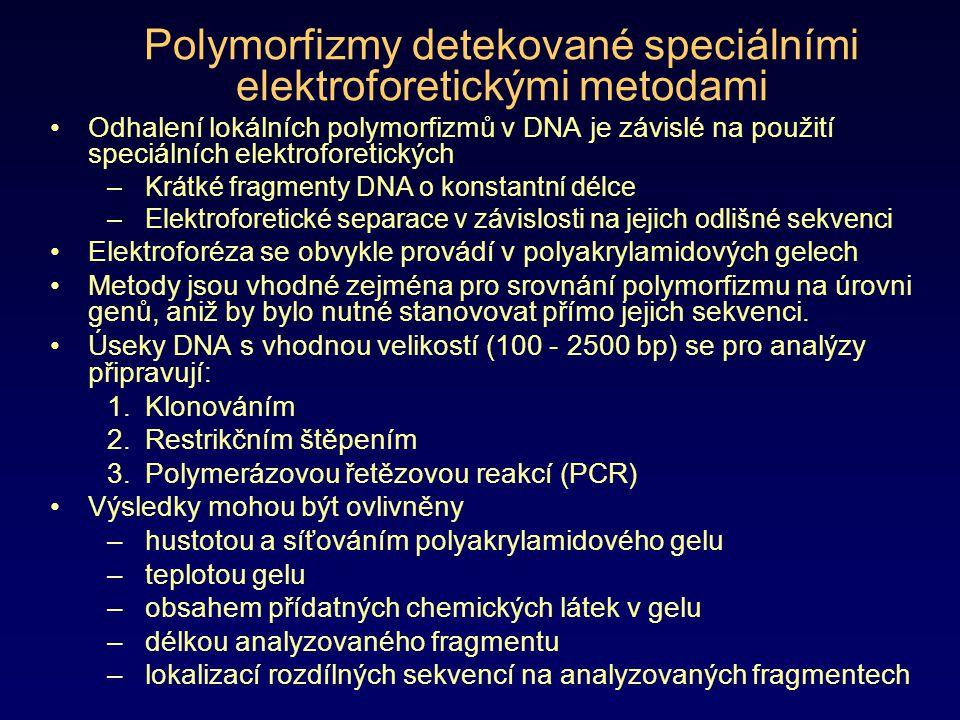 Polymorfizmy detekované speciálními elektroforetickými metodami