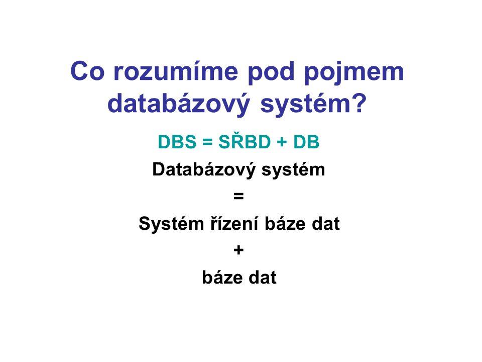 Co rozumíme pod pojmem databázový systém