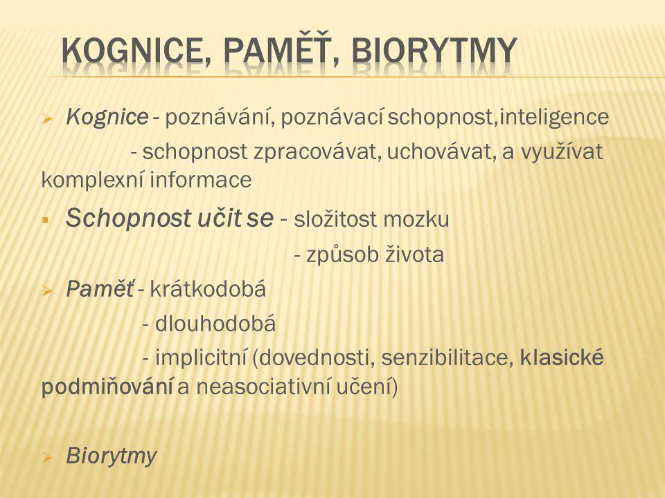 Kognice, paměť, Biorytmy