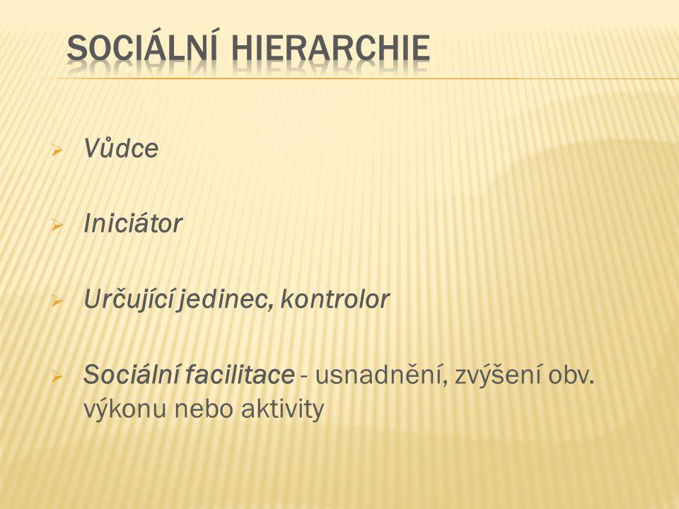Sociální hierarchie Vůdce Iniciátor Určující jedinec, kontrolor