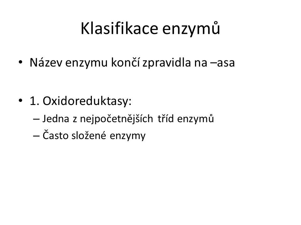 Klasifikace enzymů Název enzymu končí zpravidla na –asa