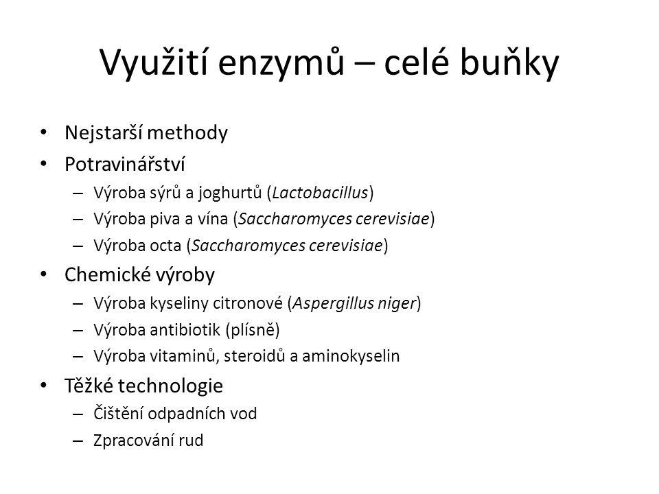 Využití enzymů – celé buňky