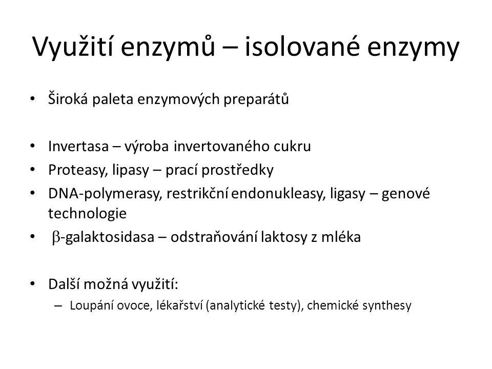 Využití enzymů – isolované enzymy