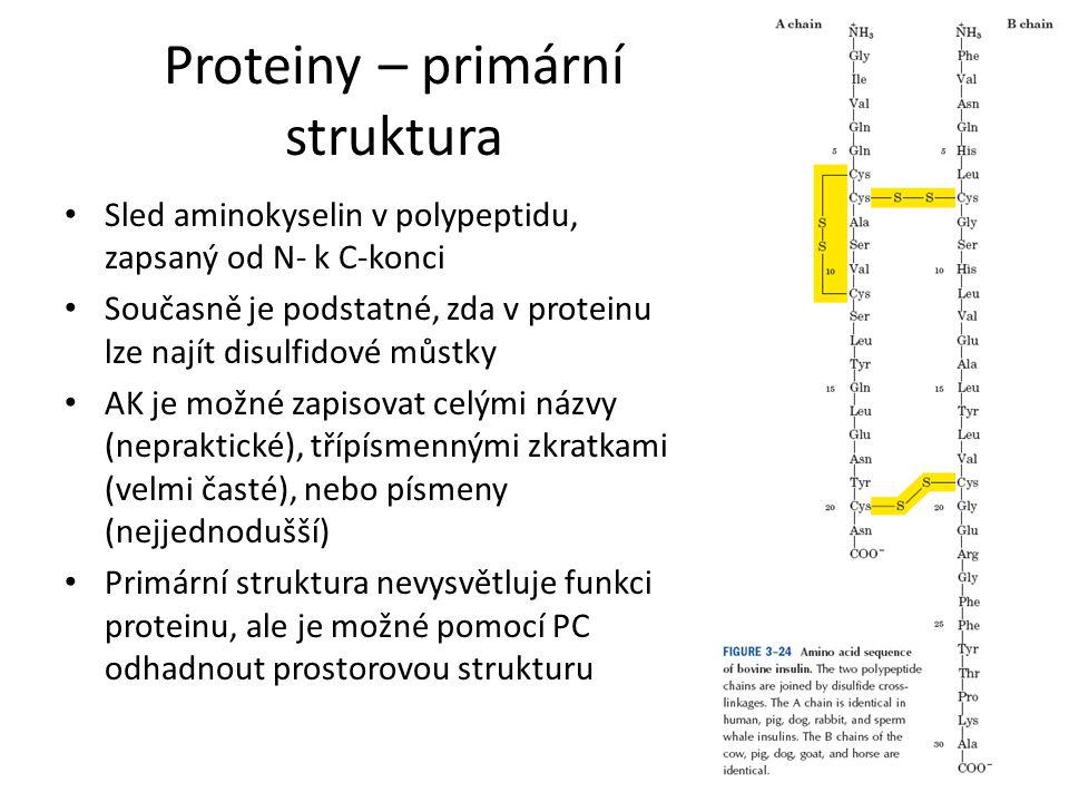 Proteiny – primární struktura