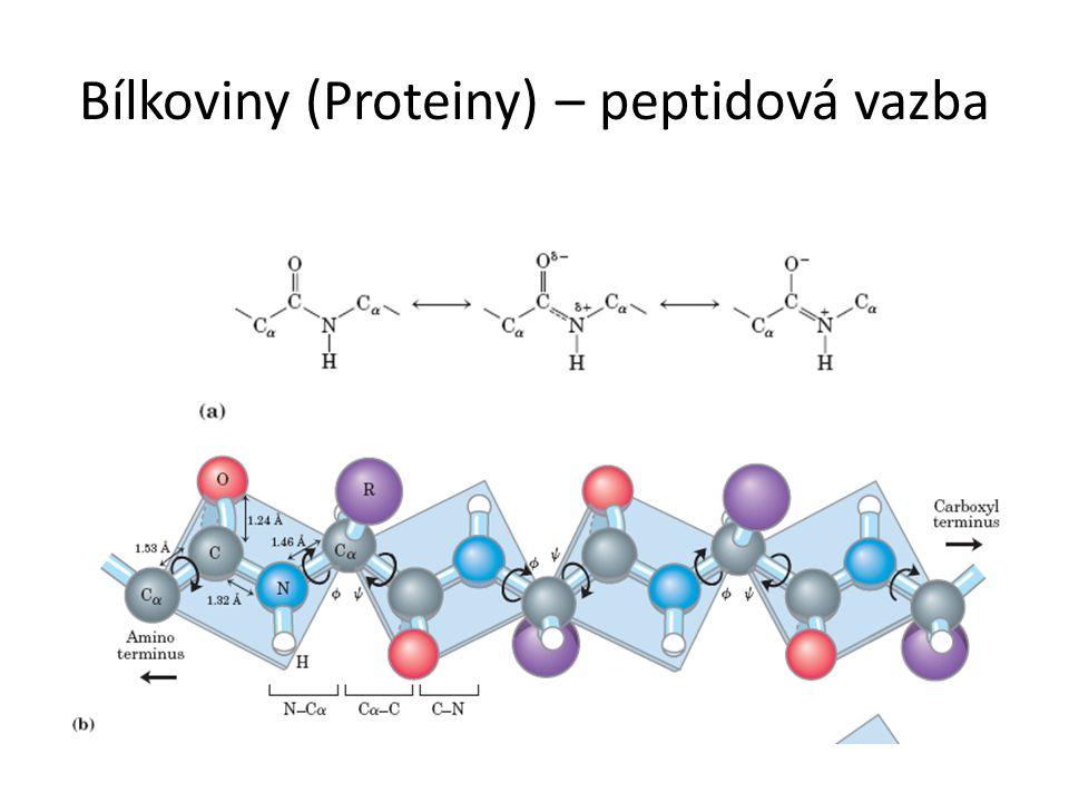 Bílkoviny (Proteiny) – peptidová vazba