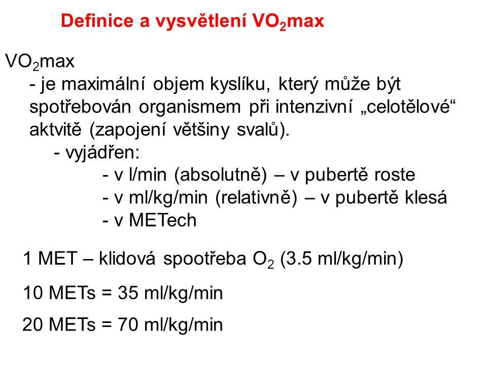 Definice a vysvětlení VO2max