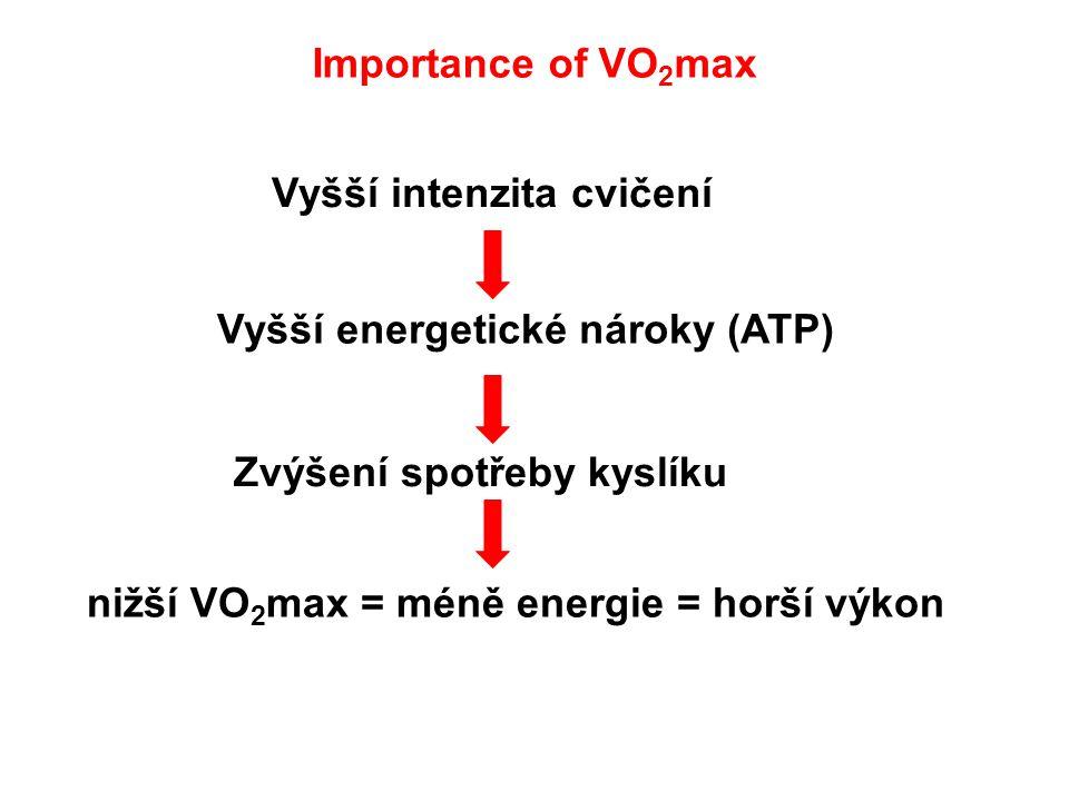 Importance of VO2max Vyšší intenzita cvičení. Vyšší energetické nároky (ATP) Zvýšení spotřeby kyslíku.