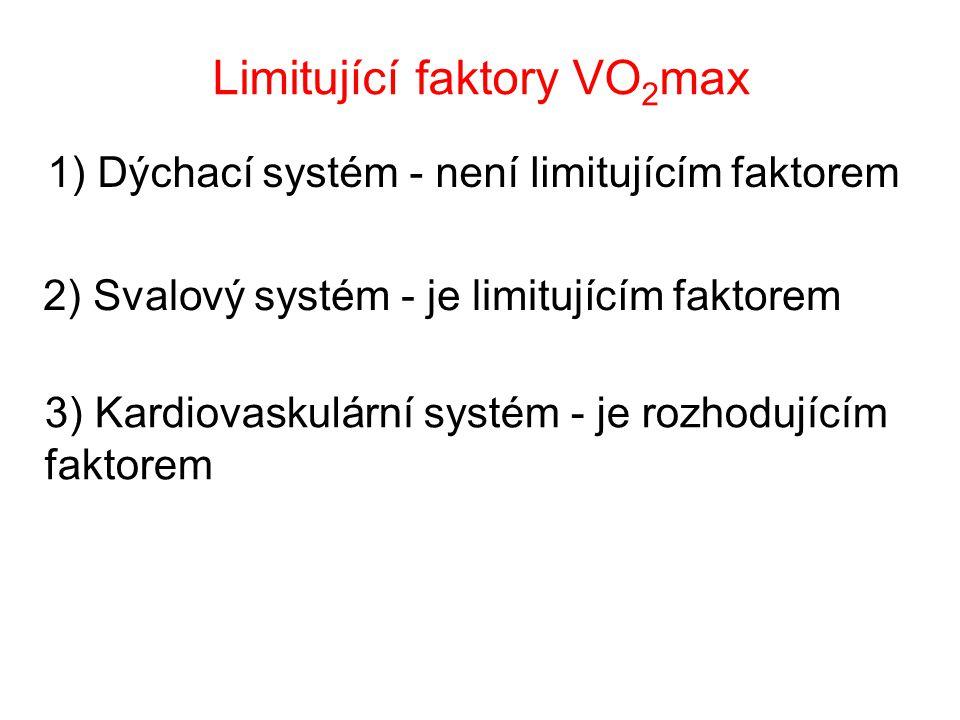Limitující faktory VO2max