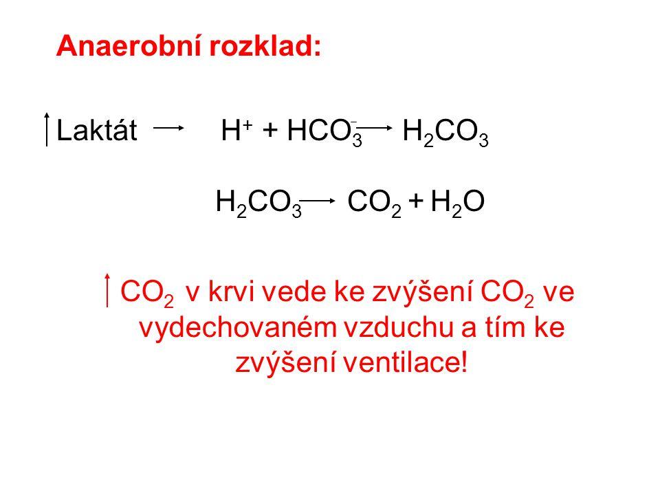 Anaerobní rozklad: Laktát H+ + HCO3 H2CO3. H2CO3 CO2 + H2O.