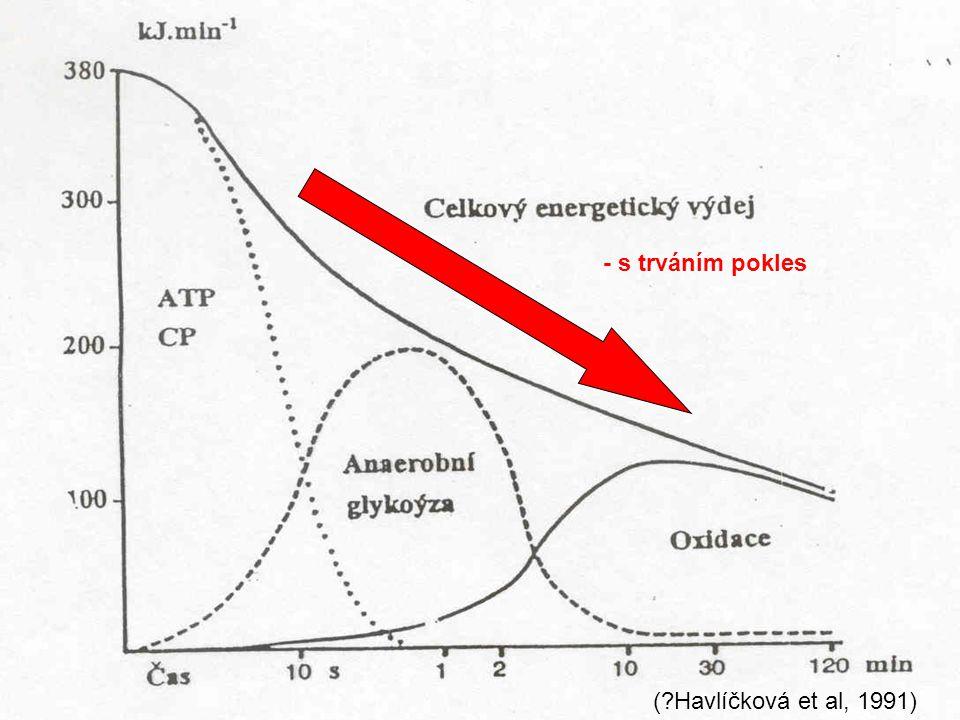 - s trváním pokles ( Havlíčková et al, 1991)